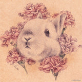 Carnations Bunny 6''x6'' canvas-wrap