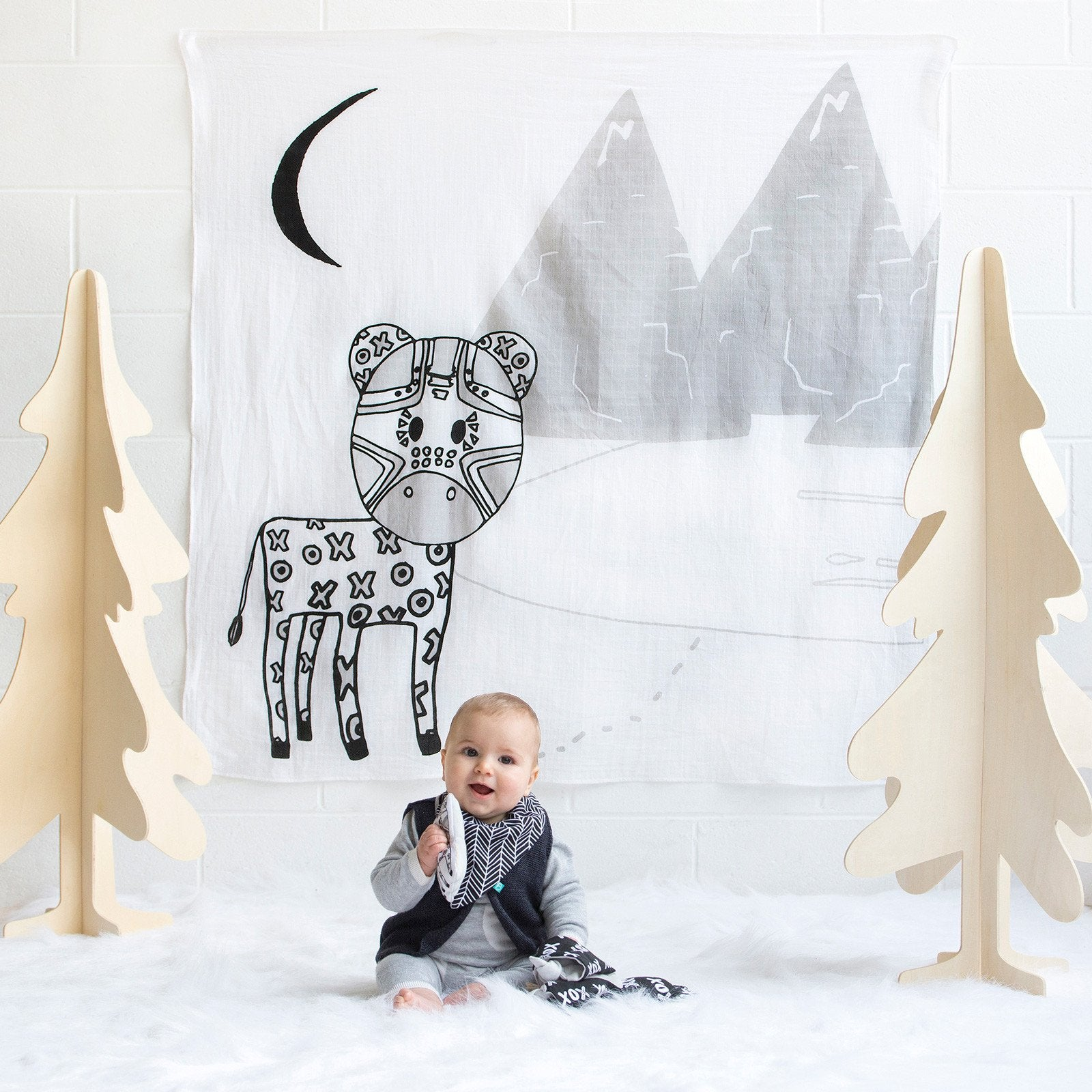 Great Gift Ideas for the New Baby Boy