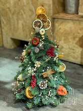 Xmas tree mini real tree 迷你小聖誕樹 真 bloom november