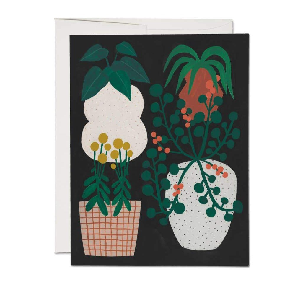 Indoor Plants Greeting Card