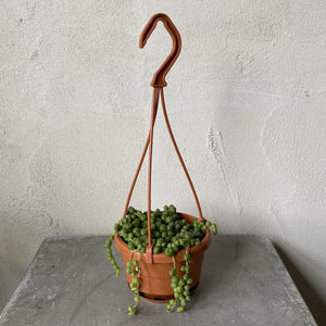Load image into Gallery viewer, String of Pearls Mini Hanging Basket