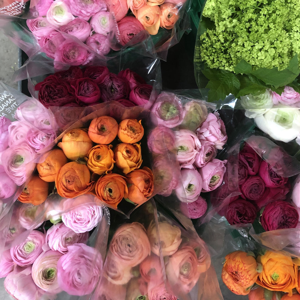Simple Ranunculus Bundle
