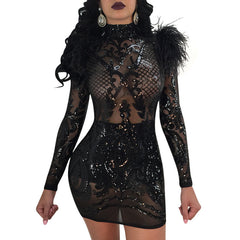 Autumn Winter Mesh Rose Gold Sequin Women Long Sleeve Turtleneck Feather Sexy See Dress