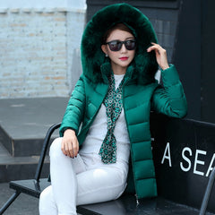 Short fur collar winter women autumn cotton padded solid color jacket