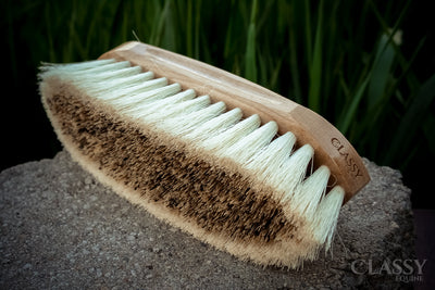 Personalized Union Center Tampico Border Horse Grooming Brush