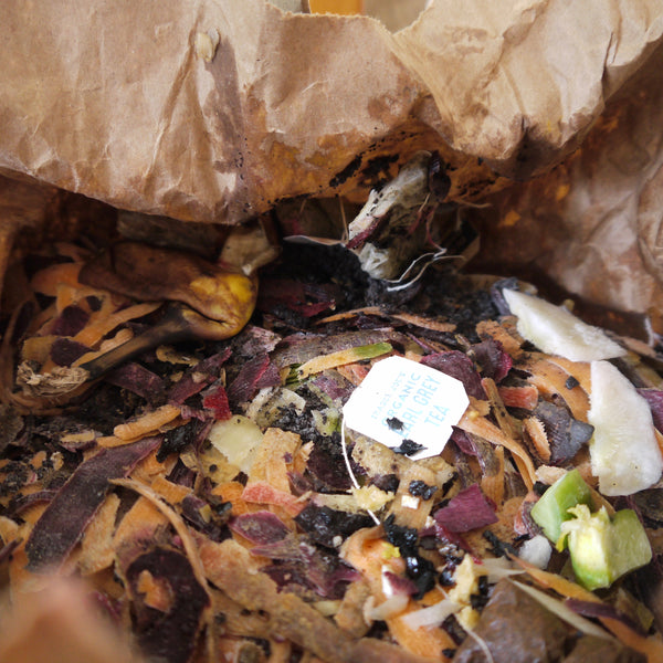 How to Start Composting (in a Tiny NYC Apartment)