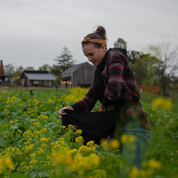 Farming in the Era of Climate Change: An Interview with Lauren Nagy of Ironbound Farm