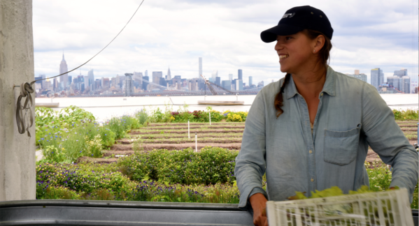 Meet Your Farmer: Brooklyn Grange