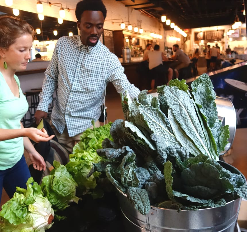 Two Local Roots customers deciding what bunch of kale to bring home from their farm share