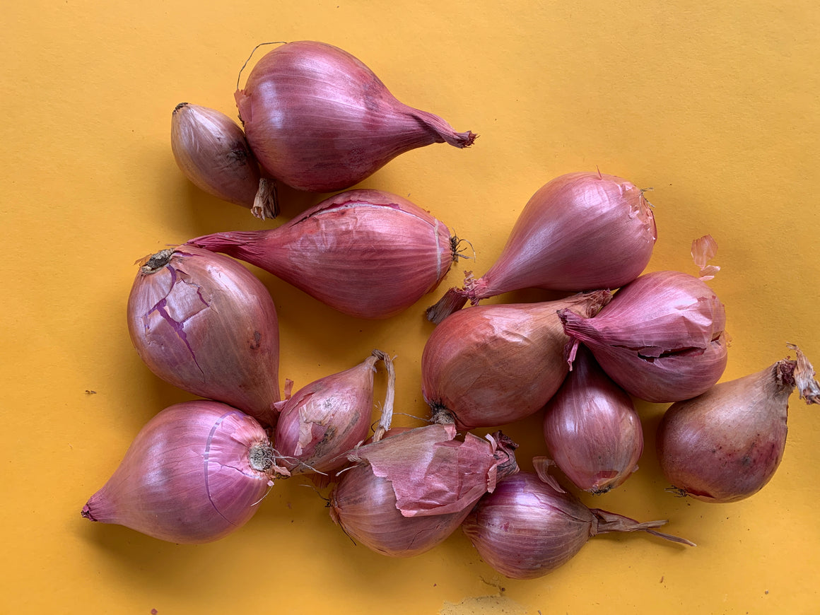 2lb bag Shallots (Add-On)
