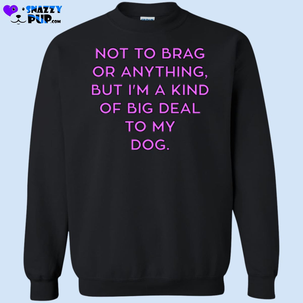 Not To Brag Or Anything But Im Kind Of A Big Deal To My Dog - Sweatshirts