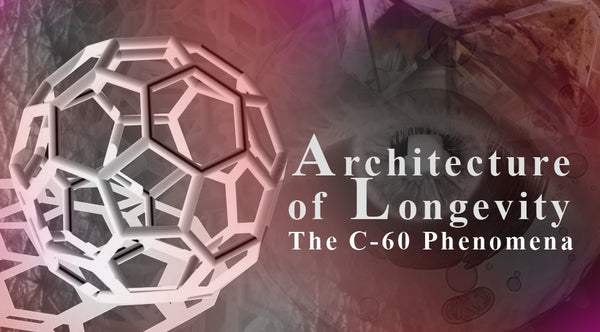ARCHITECTURE OF LONGEVITY: THE C-60 PHENOMENA