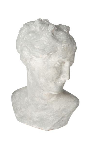 VENUS BUST - Donna's Home Furnishings in Houston