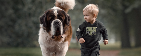Dog and Kid Walking