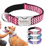 Nylon Dog Collar With Personalized ID Tag-Zaapy Pet
