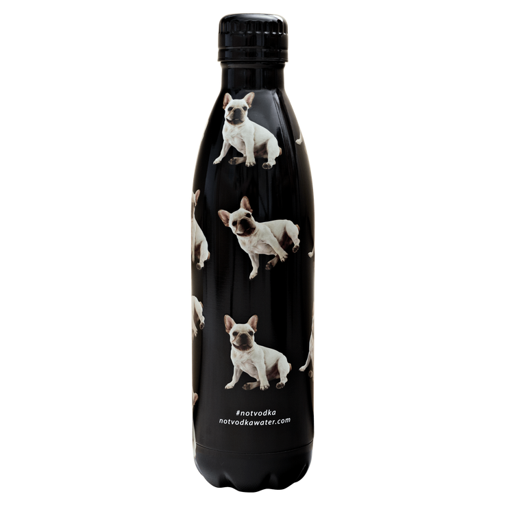 Bullet Bottle in Black French Bulldog - 444 Evergreen