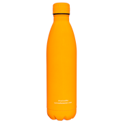 Bullet Bottle in Neon Orange - 444 Evergreen