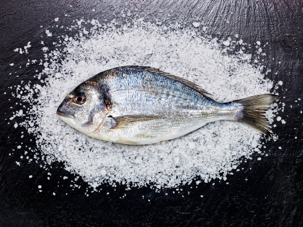 Bounty of the Sea - Jersey Sea Salt Feature in Country Living Magazine
