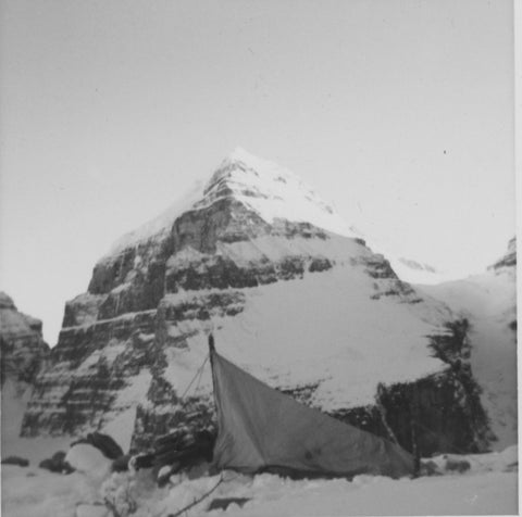 Breathtaking beauty on Victoria Glacier. The tent was up. The universe was definitely conspiring to find me the only tree... well above the tree line. October 1973