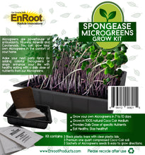 Spongease MicroGreens Grow Kit