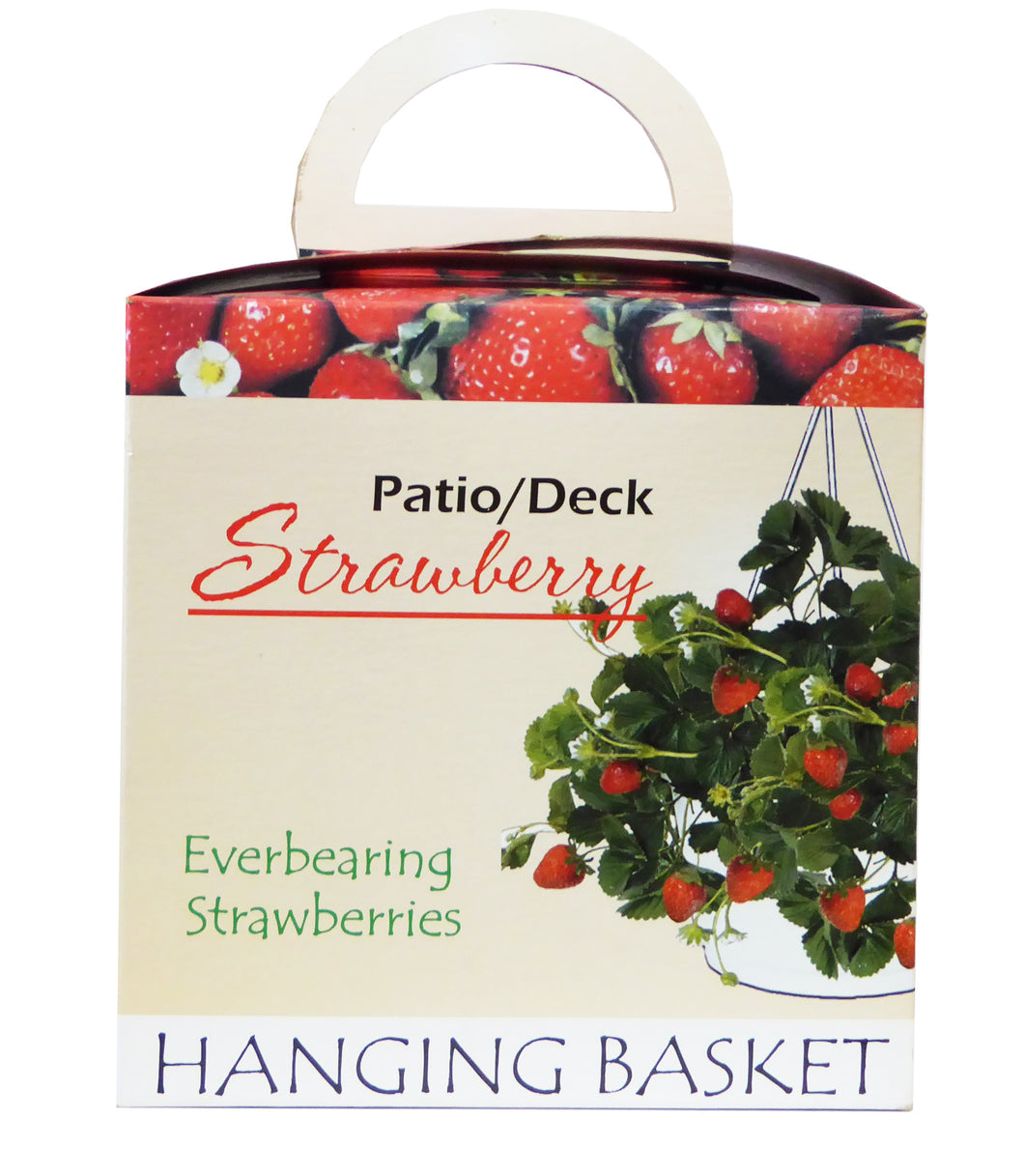 DECK & PATIO PLANT GROW KIT FOR STRAWBERRY with BARE ROOT PLANTS by Triumph