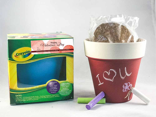 The Perfect Valentine! Crayola Chalk Pot Seed Kits