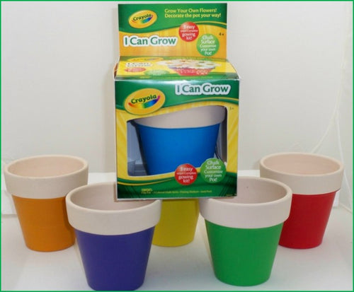 Crayola Chalk Pot Seed Kits