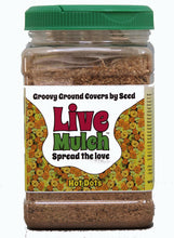 Hot Dots Live Mulch, the perfect way to add a flower bed or border