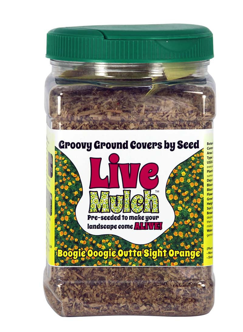 Live Mulch Outa Sight Orange - California Poppy