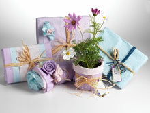 Flowering Wrapping Paper by Triumph Plant