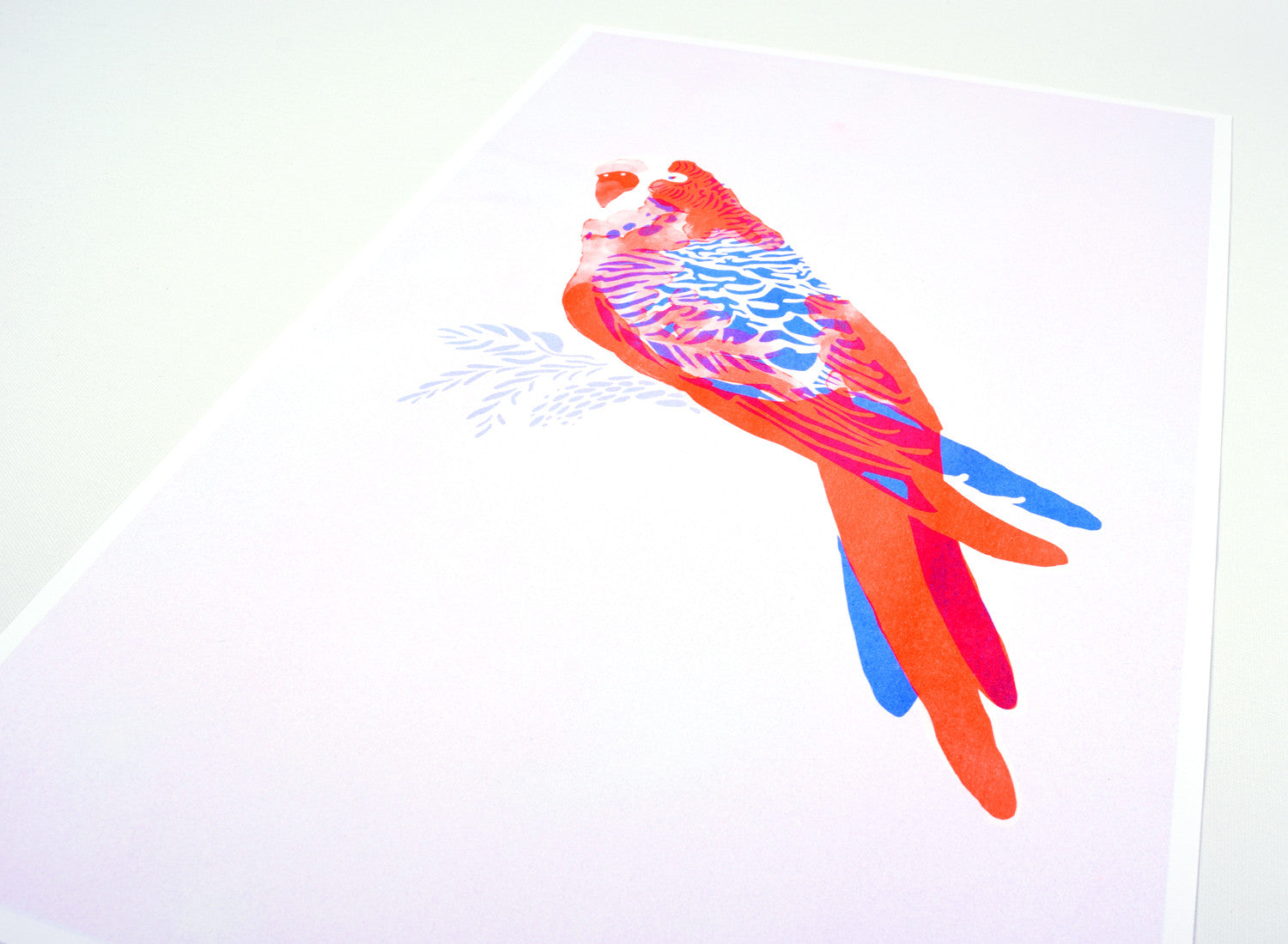 Budgie Risograph print
