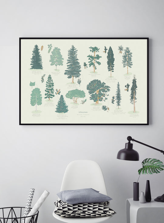 Illustration des arbres du Canada
