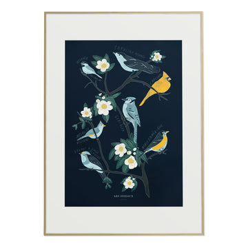 Canadian Birds Art print