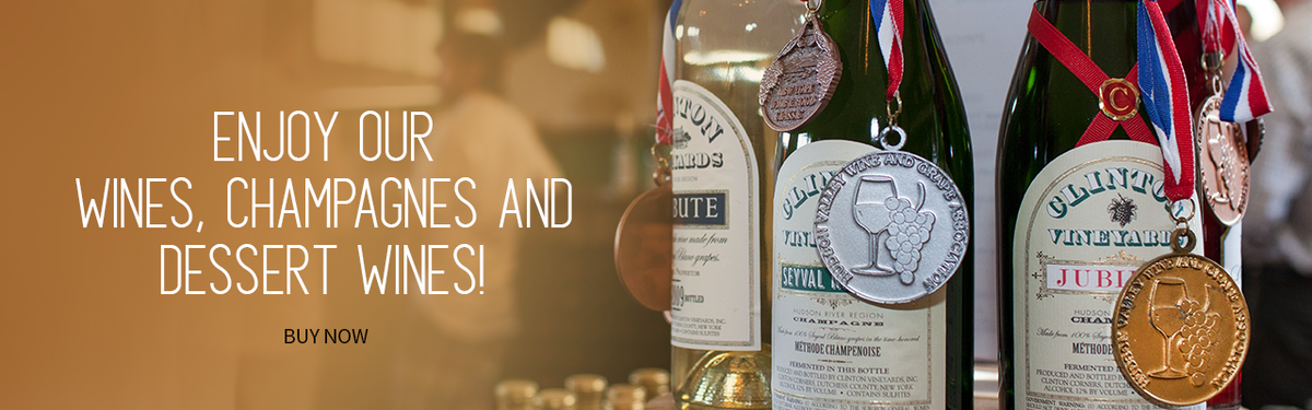 Enjoy Our Wines, Champagnes and Dessert Wines! Buy Now!