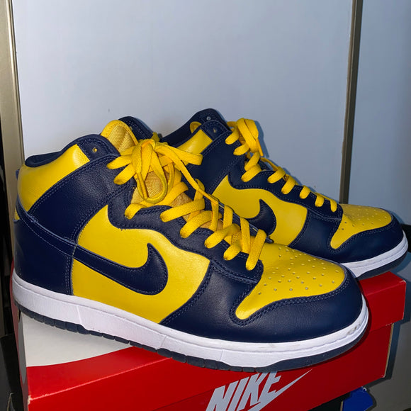 Nike Michigan Dunk