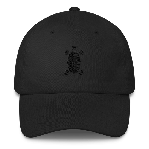 TurtleTurtle Dad Cap
