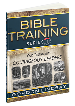 Bible Training Series, Vol. 4
