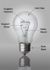 Anatomy of an Incandescent Light Bulb