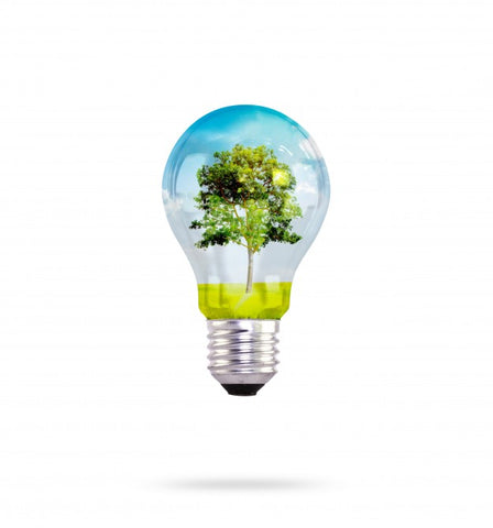 Why Are LEDs Considered Green Technology?