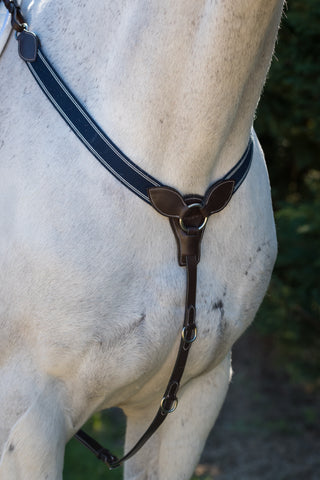 Royal Y Elastic Breastplate