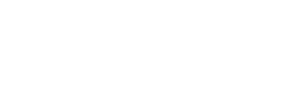 allovershirts.com