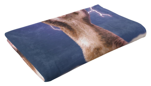 Thundercat Fluffy Blanket