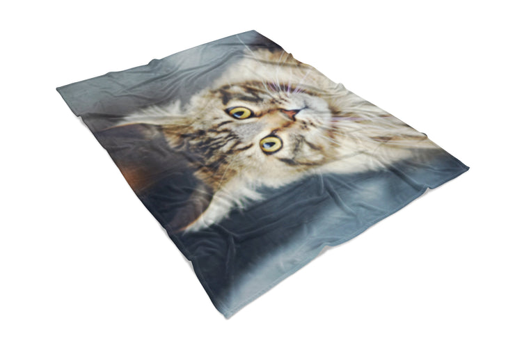 Regal Cat Fluffy Micro Fleece Throw Blanket