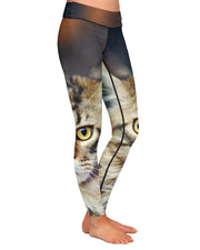 Regal Cat Yoga Leggings