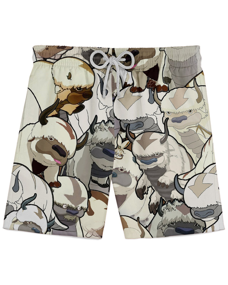 Appa printed all over in HD on premium fabric. Handmade in California.