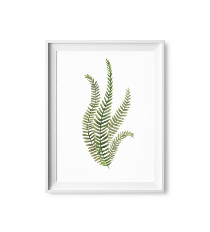 Fern Bunch Watercolor Print