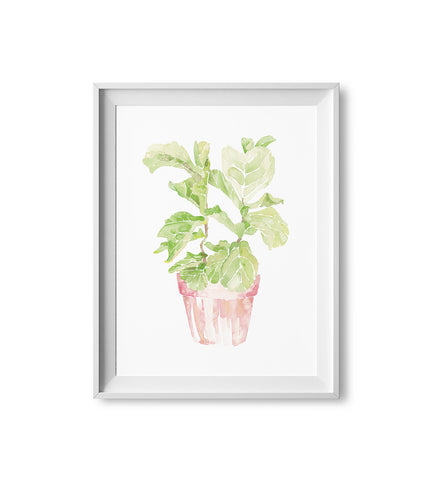 Fiddle Leaf Fig Watercolor Print