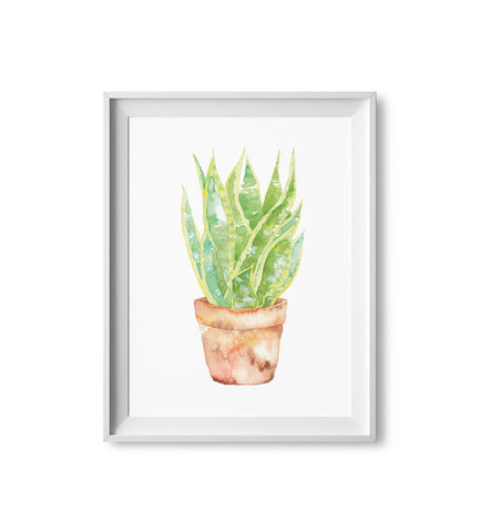 Snake Plant Watercolor Print