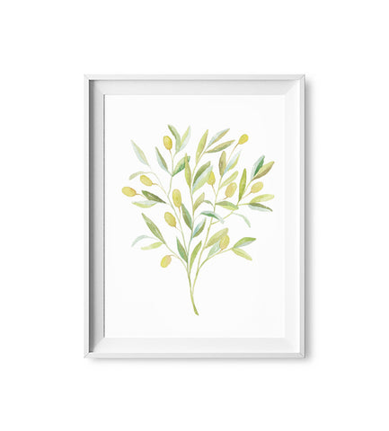 Peaceful Olive Watercolor Print