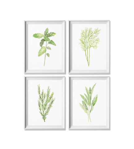 Mint, Dill, Rosemary & Sage Watercolor Print: Four Pack